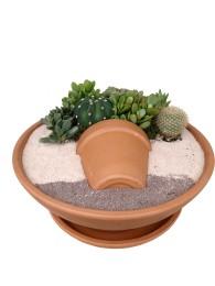 Centro de  cactus  en ceramica