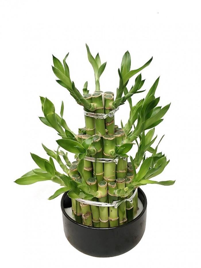 Composicion de tallos de bambu en cerámica