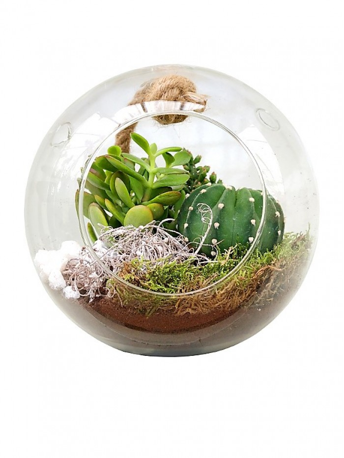 Bola de cristal con 3 cactus M8.50