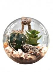 Bola de cristal con mini cactus