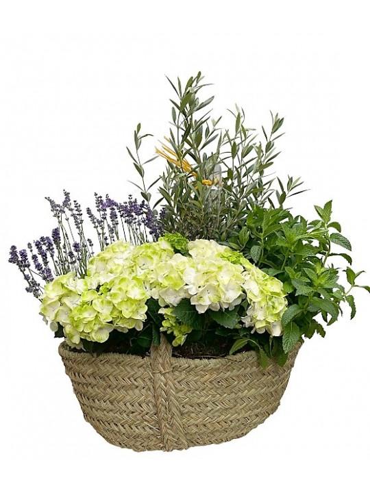 Centro campestre de hortensias blancas en esparto