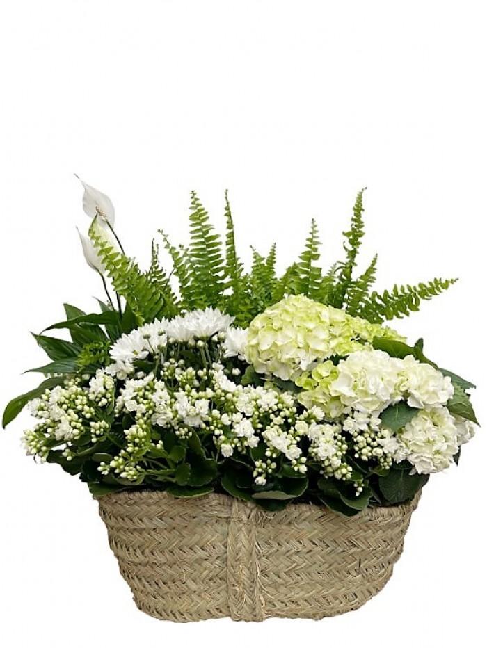 Centro blanco hortensia helechos
