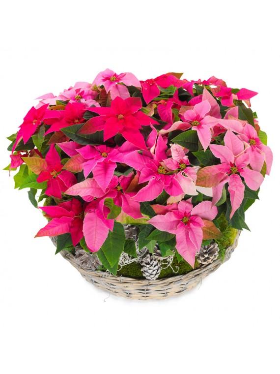 cesta de flores de pascua variadas