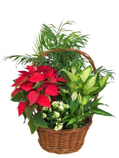 Cesta de Flores de pascua decorada