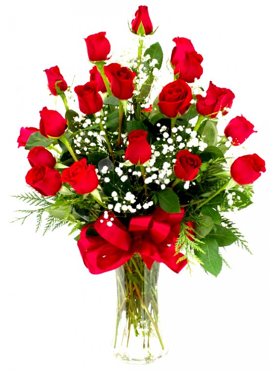 1 Jarron de 24 rosas con paniculata