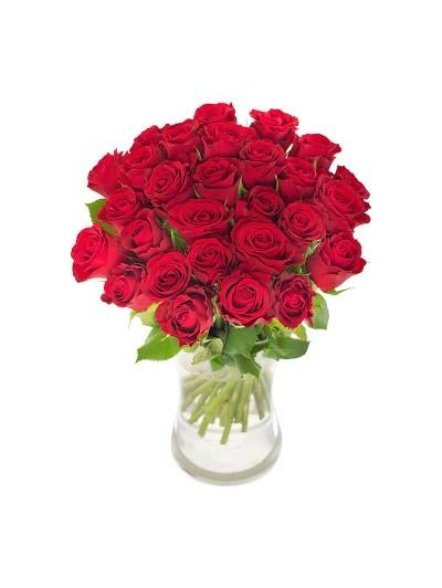 Jarron de 24 rosas  rojas