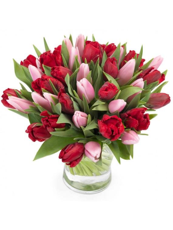 Bouquet de 40 tulipanes variados