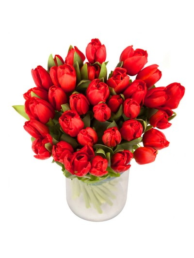 1 Jarron de tulipanes rojos