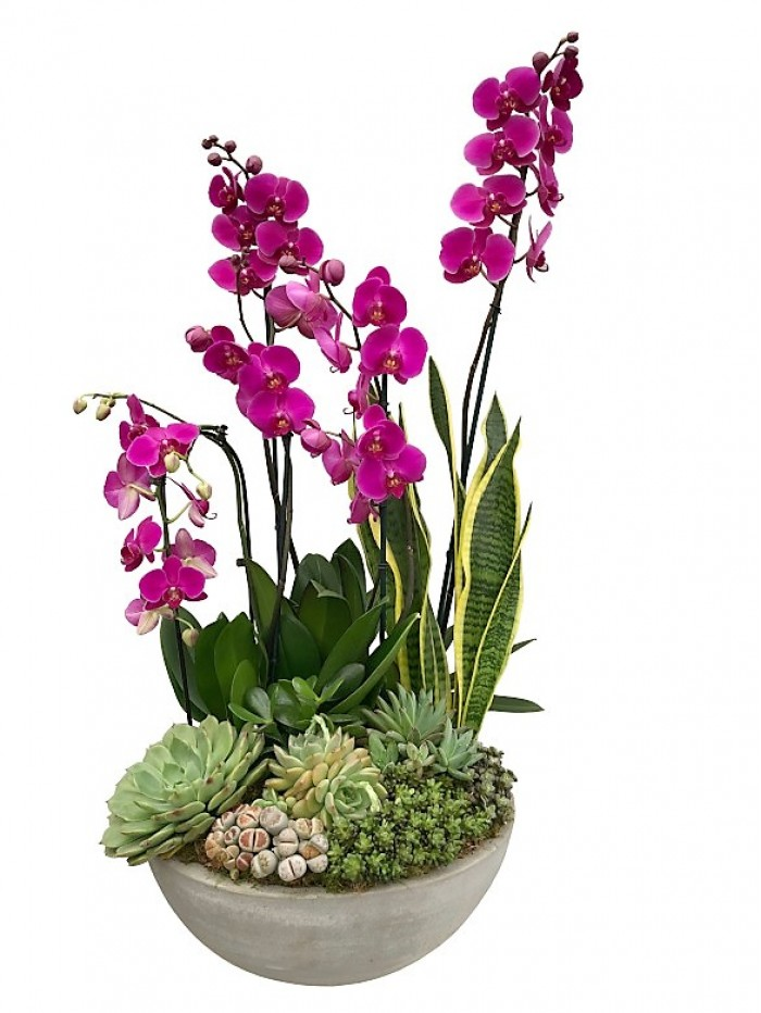 centro de  orquideas moradas con crasas en ceramica