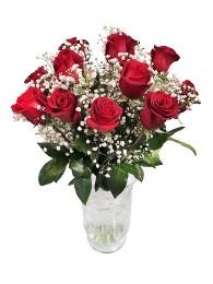Jarron de 12 rosas tallo largo