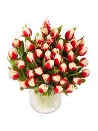 Bouquet de 40 tulipanes bicolor