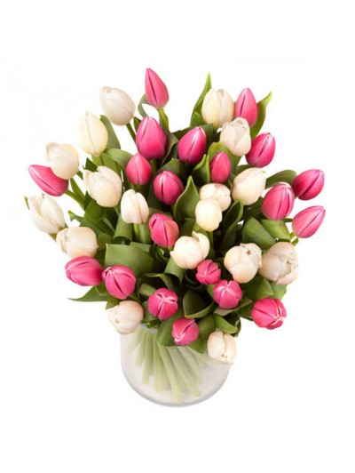 Bouquet de 40 tulipanes dos colores